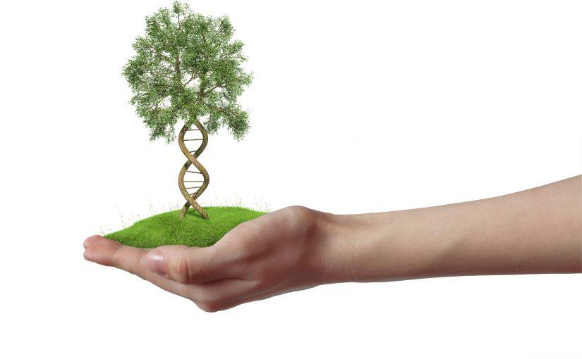 Web Conference on Genetic Basis of Quantitative Traits and Multitrait Association.